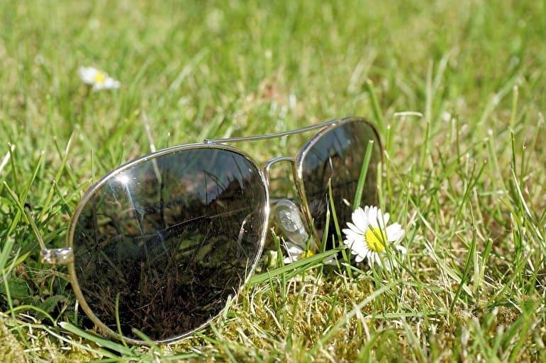 週末ピクニック芝生サングラス